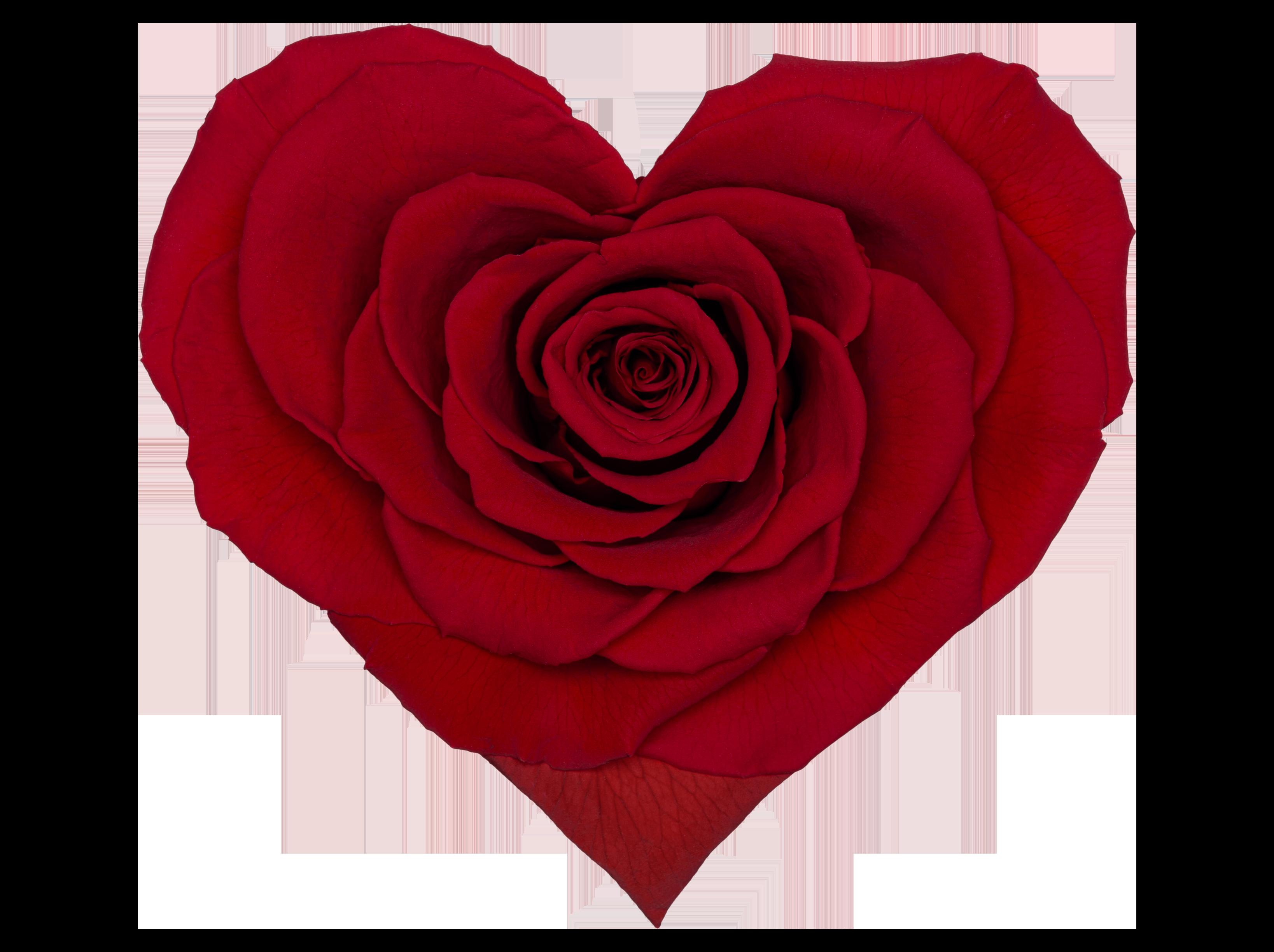 Heart Red 02 Transparente