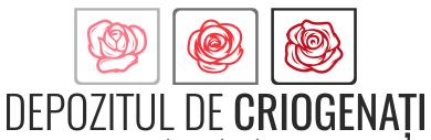 logo_depozitul_fara_slogan